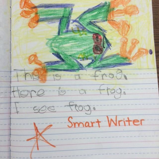 Smart Writer Example