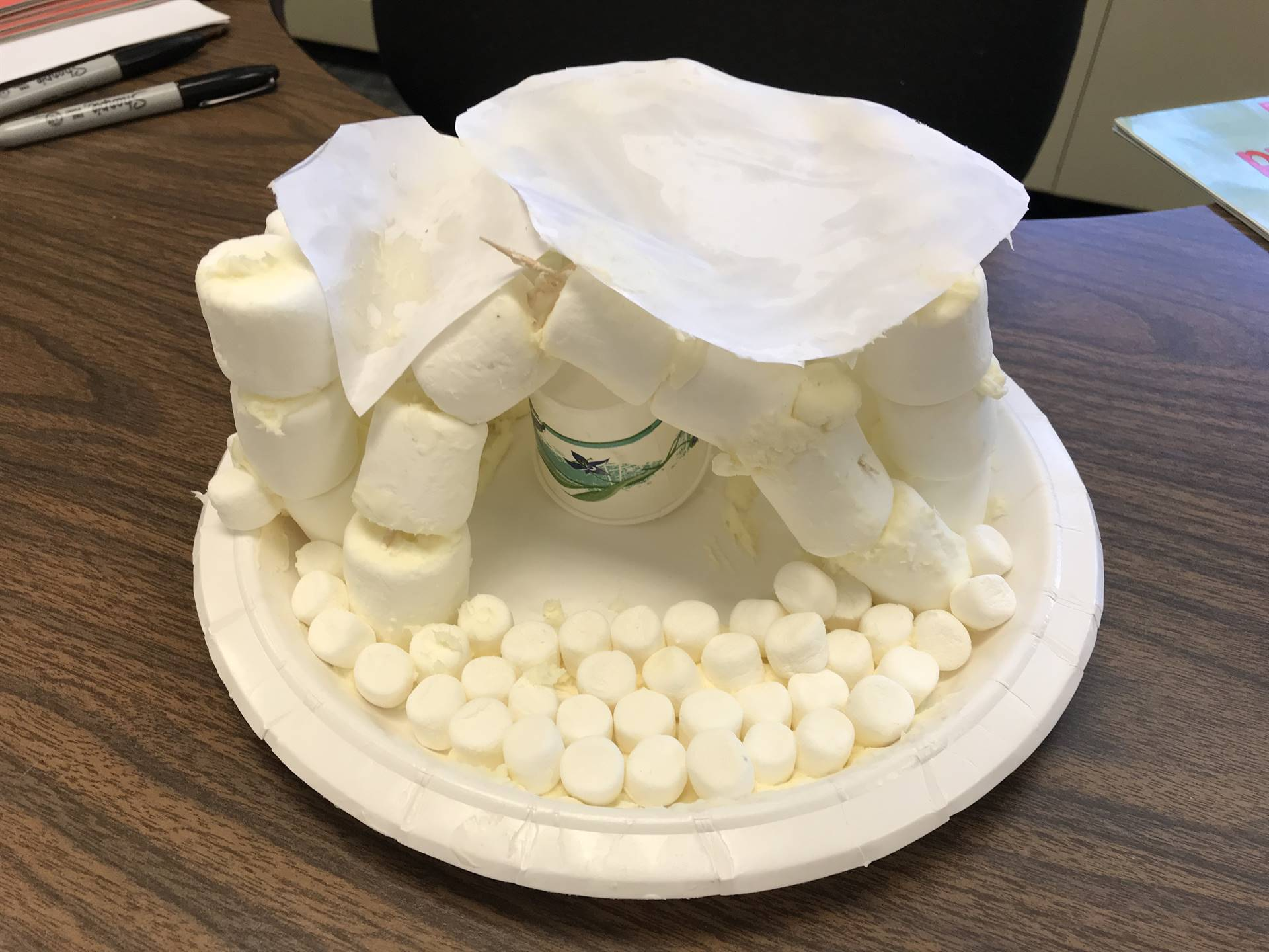 January STEAM Lesson: Igloos