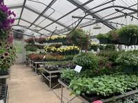 The 2021 FFA Greenhouse
